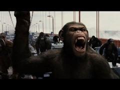 El planeta de los simios R Evolucion