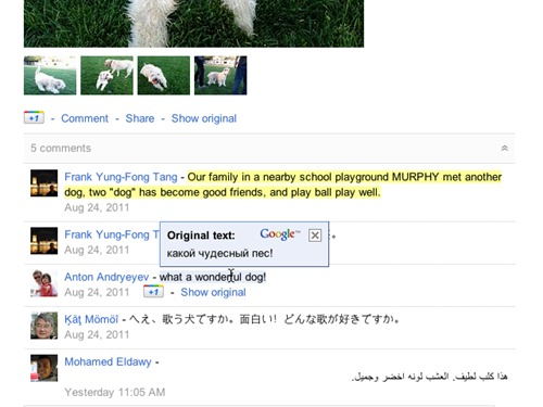 Traduce de stream para google