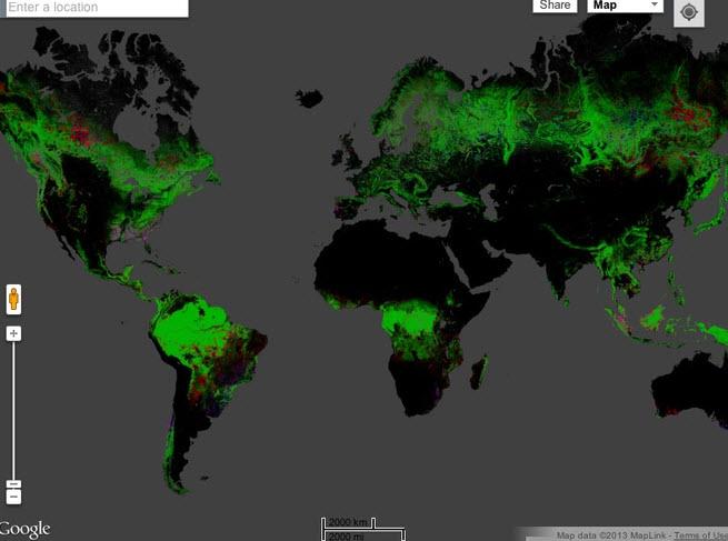 Mapa interactivo de deforestación