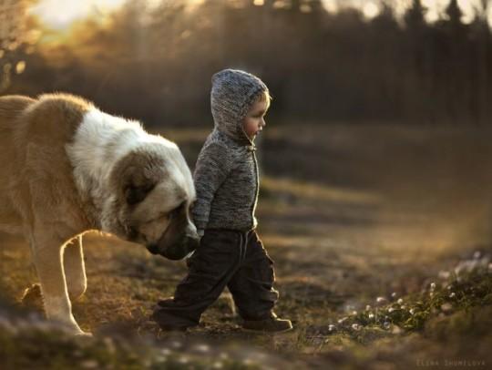 Caminando con el perro por la granja