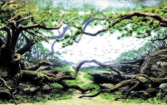 Diseño de acuario con bonsai de peces