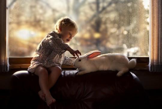 Foto de niño y conejo con fondo de luz