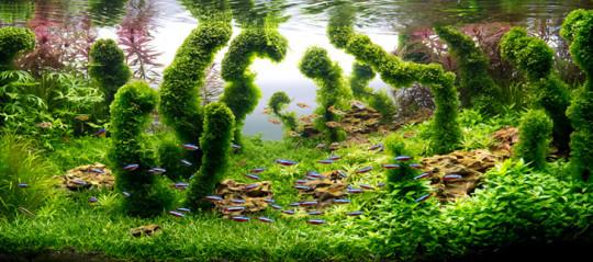 Hermoso diseño de acuario con plantas